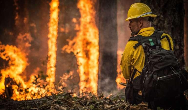 Ein Feuerwehrmann versucht in einem stark brennenden Wald zu löschen.